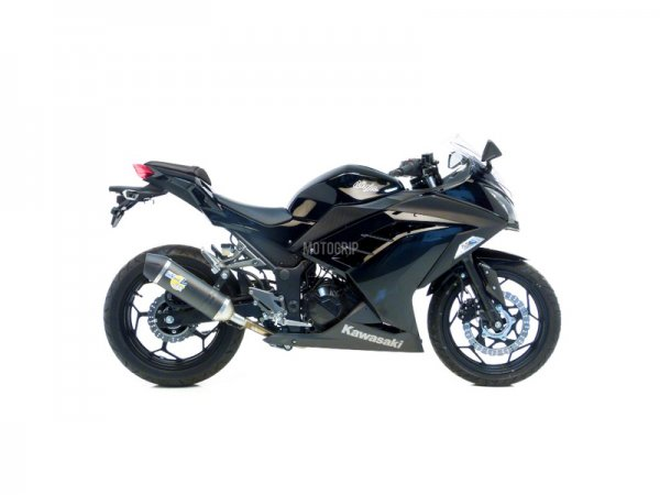 Carbon Slip-On Kawasaki NINJA 300 Auspuff